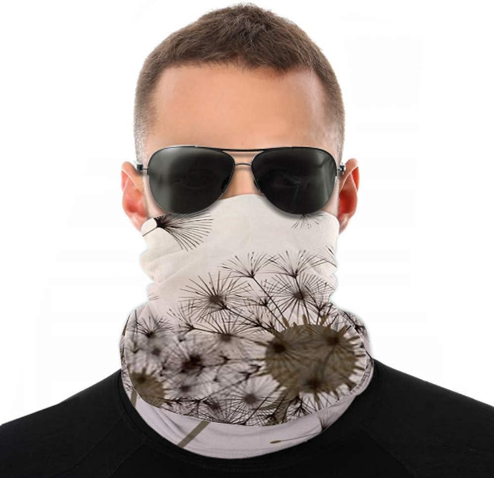 Headbands For Men Women Neck Gaiter, Face Mask, Headband, Scarf Abstract Background Dandelion Design Wind Blows Turban Multi Scarf Double Sided Print Women Headband For Sport Outdoor