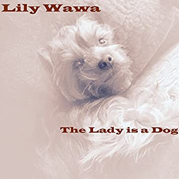 The Lady Is a Dog