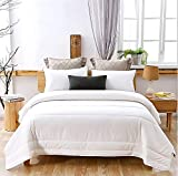 AusGolden Queen Quilted Comforter 100% Australian Wool Comforter Duvet with Organic Cotton Cover All-Season Hypoallergenic Plush Microfiber Washable Alternative Bedding