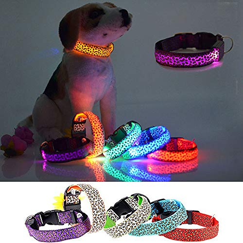 Cdycam LED Pet Dog Collar Leopard Glowing Flash Adjustable Puppy Collar for Night Safety Light-up for Small Medium Large Dogs (Large, Purple)