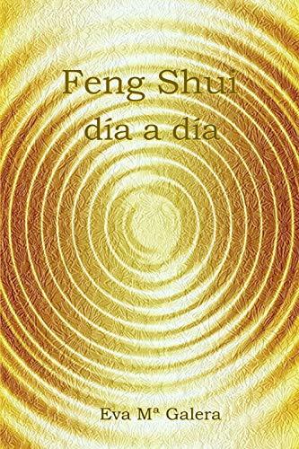 DDLBiz Pi/èces de Monnaie Feng Shui Chinois pour la Richesse et Le succ/ès
