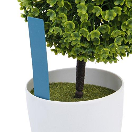 Marqueurs Etiquettes Plante de Pépinière Arbustes Semis Bouture Carte Tag Jardin Kit 100pcs 10*2cm Bleu