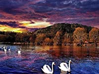 DIY刺繡クラフトキット11CT刻印クロスステッチキット川の白鳥刺繡スターターキットの全範囲大人の針仕事初心者キッズギフトキット壁の装飾家の装飾40x50cm