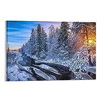 星のポスター自然の風景森の日の出2キャンバスアートポスターと壁アート写真プリント家族の寝室オフィスの装飾ポスター20×30インチ(50×75cm)