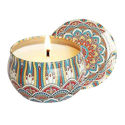 ZHHOOHAG Scented Candles Decoration vintage Long Lasting Scented Candles All Natural Soy Candles Candle (Color : B)