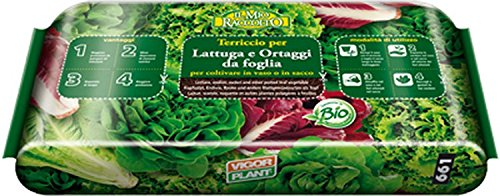 Sustrato para lechuga y hortalizas de hoja