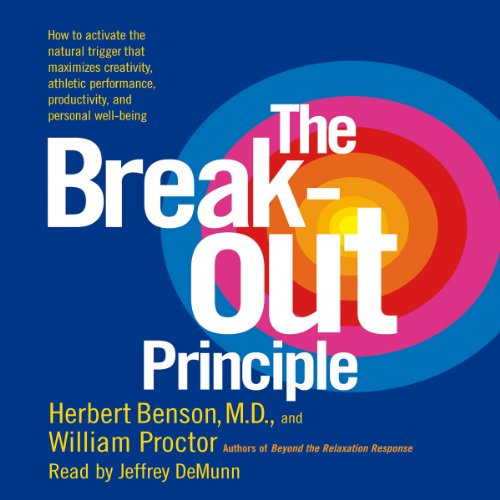 The Breakout Principle audiobook cover art
