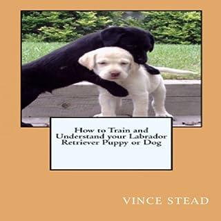 Labrador Retriever Dog Training & Behavior Book audiobook cover art