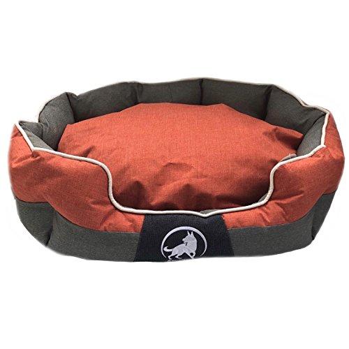Aquagart Premium XL Hundebett für große Hunde I Hundekorb für große Hunde waschbar I Hundekissen robust I Hundekörbchen mittelgroße Hunde I Größe 100cm x 80cm x 25cm I orange (XL, Orange)