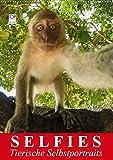 Selfies. Tierische Selbstportraits (Wandkalender 2020 DIN A2 hoch): Lustige Selbstportraits aus der Tierwelt (Monatskalender, 14 Seiten ) (CALVENDO Tiere) - Elisabeth Stanzer