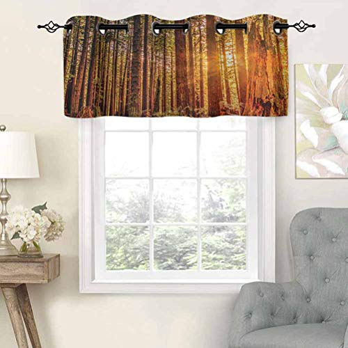 Hiiiman Short Curtains Grommet Top Elegant Panels Tall Trees Red Woods Forest Humboldt California Sequoia Picture, Set of 1, 42'x18' Decoration for Bathroom/Bedroom/Living Room