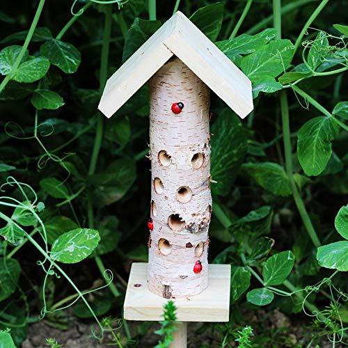 TT GO Handmade in Legno Insetto casa Coccinella Habitat Perfetto casa Cucina Giardino Recinzione...