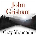 Gray Mountain cover art