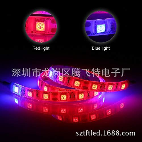 Tira de luz Epoxi Luz con tira de relleno de planta Epoxi impermeable 4: 1 5: 1 @ Otras especificaciones contactar a servicio al cliente