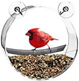 Contempo Creatures Window Bird Feeder for Wild Birds| Strong and Secure Suction Cups | Drain Holes to Prevent Moldy Seed | 100% Clear Acrylic | All-Weather, Including Winter Feeding