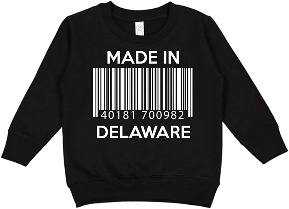 Toddler//Kids Sweatshirt Barcode Made in Delaware