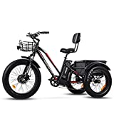 electric adult tricycle - Addmotor Motan Electric Tricycles 20