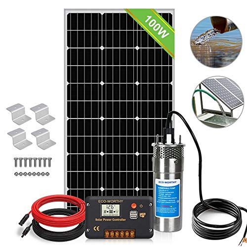 ECO-WORTHY 12V Solar Well Pump System, Large Flow 3.2GPM, 100W Solar Panel + 12V Stainless Steel Submersible Well Pump + 20A Controller + 16ft Cables for Remote Watering, Garden, Farm Irrigation, Tank