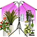 Grow Light with Stand, FRENAN Grow Lights for Indoor Plants with Red Blue Spectrum, 10 Dimmable Brightness, 4/8/12H Timer, 3 Switch Modes, Adjustable Gooseneck, Suitable for Various Plant Growth