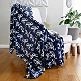 AVAFORT Velvet Plush Home Fleece Throw Blanket for Couch Sofa Bed, Warm Elegant Fuzzy Flannel Blanket for Kid Baby Adults or Pet, Lightweight Soft Cozy Warm Luxury Microfiber Blankets (Elephant Blue)