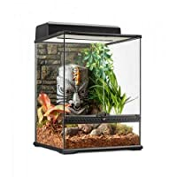 """Glass terrarium with unique Tiki back panel. Front glass ventilation Waterproof base Mesh cover made of high-quality stainless steel Lock to prevent """"outbreaks"""""""