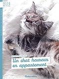 Pas si bêtes : Un chat heureux en appartement