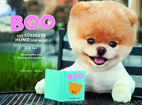 Boo - Der süßeste Hund der Welt