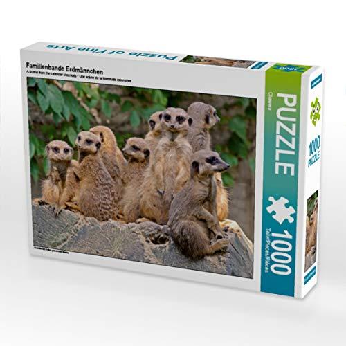 CALVENDO Puzzle Familienbande Erdmännchen 1000 Teile Lege-Größe 64 x 48 cm Foto-Puzzle Bild von Barbara Mielewczyk