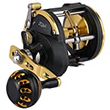 Sougayilang Trolling Reel Saltwater Level Wind Reels, Drag Reels Boat Fishing Ocean Fishing for Sea Bass Grouper Salmon-STC40