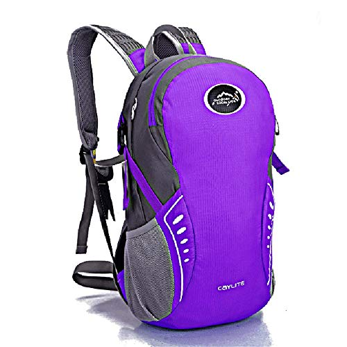 KNJF Waterproof Cycling Backpack Cycling Backpack Ultralight Waterproof Hiking Backpack for Hiking Running Skiing Cycling Camping Outdoor Activities 15L (Color : Purple, Size : 38 * 24 * 15cm)