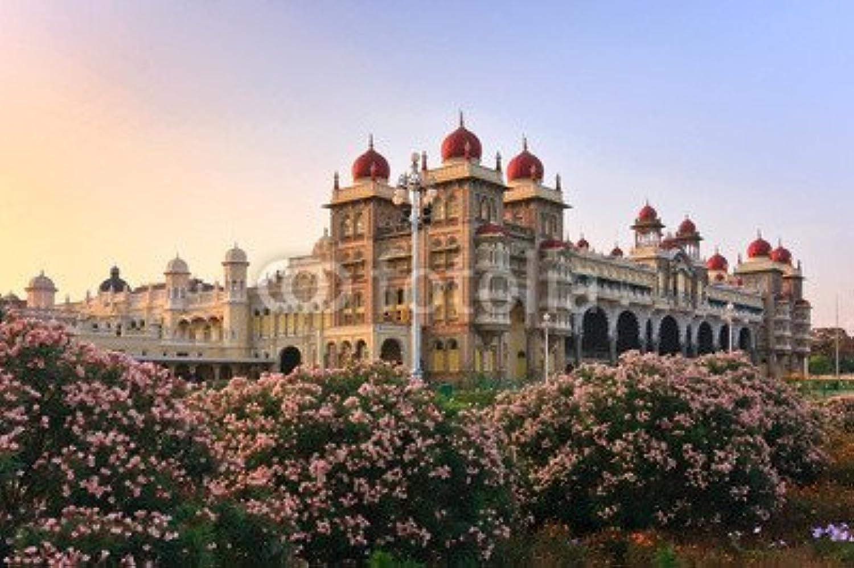 artículos novedosos Mysore Palace, India (56391170), lona, 80 x 50 cm cm cm  tienda de venta