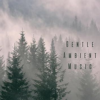 Gentle Ambient Music