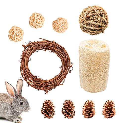 10 Stück Hamster Kauspielzeug Set, Natur Kleintiere Zahnpflege inkl. Grasball Rattenball und -ring, Kiefernzapfen Getrocknete Luffa Spielzeug für Kaninchen Meerschweinchen Ratten Chinchilla (H01)