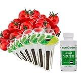 kit di baccelli di semi di pomodorini ciliegino tradizionali per miracle-gro aerogarden (6 baccelli)