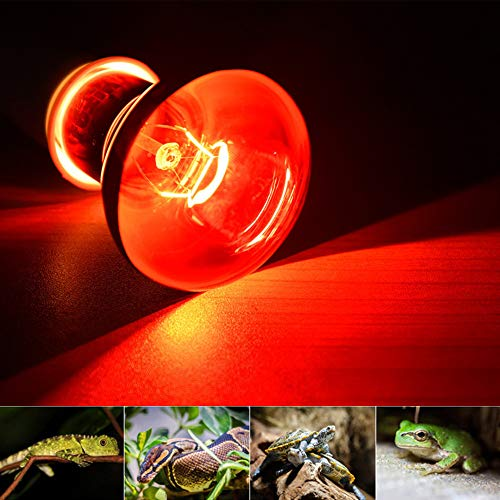 MD Lighting Pet Supplies 100w Infrared Heating Lamp 2 Pack, 110v E27 Basking Spot Light Bulbs for Reptile and Amphibian, as Bearded Dragons, Turtles, Ball Pythons, Red