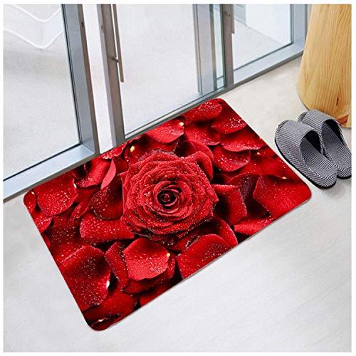 Valentine's Day Welcome Doormat, Indoor Non Slip Door Mat, Floor Carpet Rugs (60x40CM, C)