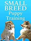 Small Breed Dog Training