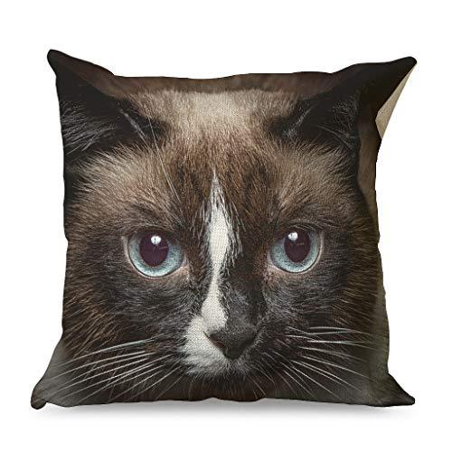 QVOOD Funda de cojín de lino con diseño de gato y animales, 45 x 45 cm, color blanco