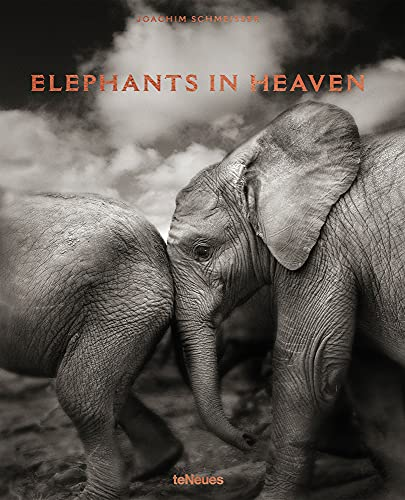 Elephants in Heaven (English, French and German Edition)