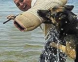 GOOCO Kit di Allenamento per Cani, Protezione per Le Braccia, Juta Durevole per addestramento di Cani di Taglia Media, Accessori educativi e per addestramento per allenare i Cani