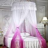 GLXQIJ GroßE Romantische Farbverlauf Kuppel Moskitonetz Vorhang Prinzessin Bett Baldachin Spitze Runde Zelt BettwäSche, Pink - 2