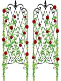 Amagabeli 2 Pack Garden Trellis for Climbing Plants 60' x 18' Rustproof Black Iron Potted Vines Vegetables Vining Flowers Patio Metal Wire Lattices Grid Panels for Ivy Roses Cucumbers Clematis GT04