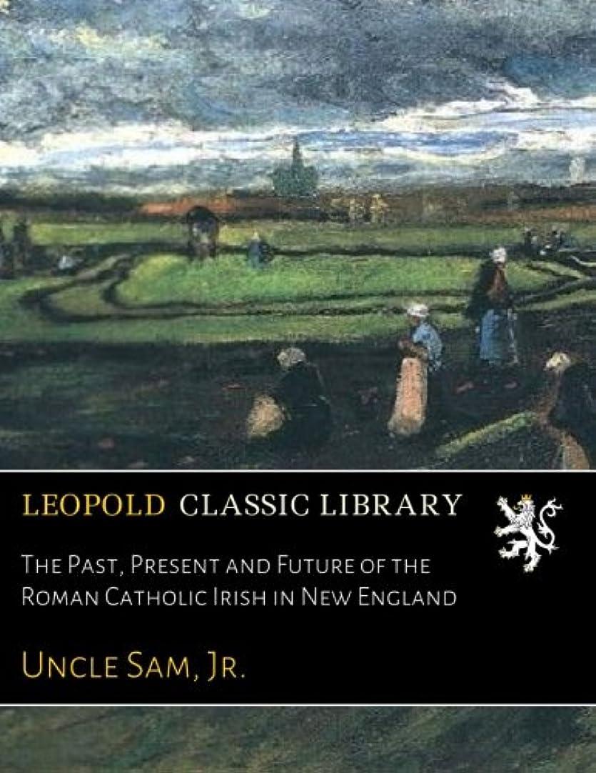 落花生がっかりする罹患率The Past, Present and Future of the Roman Catholic Irish in New England