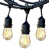 LEDERA Weatherproof LED String Lights, 48ft Indoor/Outdoor Lights, S14 LED Bulbs 2W, 15 Sockets, Commercial Hanging Lights for Patio, Garden, Backyard - Black