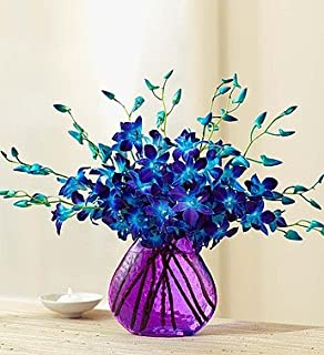 1800Flowers Ocean Breeze Orchids with Purple Vase (10 Stems)