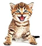 EROSPA 3D Katze/Cat Wand-Aufkleber Fenster Wandtattoo - Sticker - Wohndeko - 20 x 30 cm