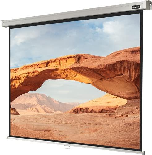 celexon manuell ausziehbare Heimkino- und Business-Beamer-Leinwand 4K und Full-HD Rollo-Leinwand Professional - 220 x 165 cm - 4:3 - Gain 1,2