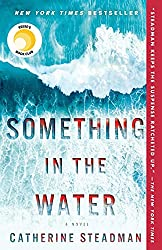 Something in the Water review