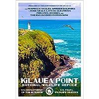 Kilauea Point National Wildlife Refuge, Kauai, Hawaii – WPAスタイル 国立公園ポスター – 13インチ x 19インチ – 壁装飾 ホームとオフィス用 – オリジナルアートワーク