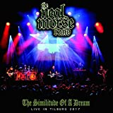 The Neal Morse Band: The Similitude of a Dream Live in Tilburg 2017 (DVD (Standard Version))
